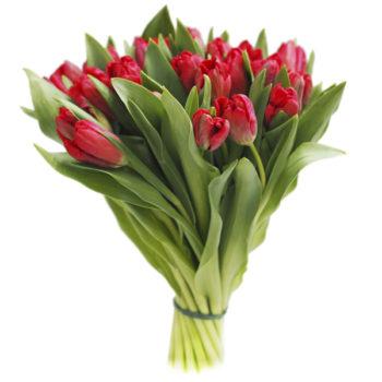 Букет тюльпанов Flowers Retail