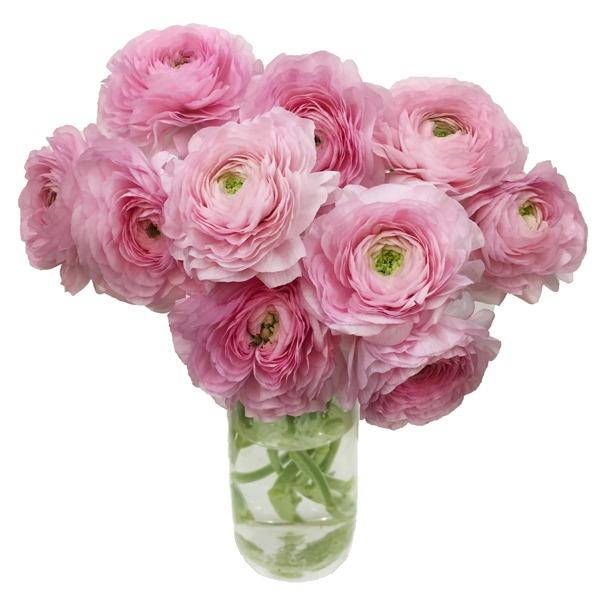 Купить букет ранункулюсов, 7 роз доставка цветов барнаул